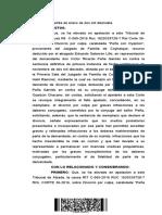 Apelacion Carlos.pdf