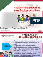 Presentación de Proyectos Socioproductivos (2015) (Última Versión)