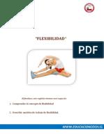 CAPACIDADES CON DICIONANTES (AR) CAPITULO_4_ 2016.pdf