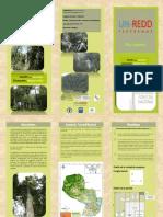 Triptico Inventario Forestal Nacional