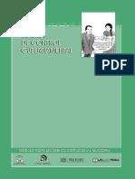 INSTRUCTIVO SISTEMA DE CONTROL GUBERNAMENTAL.pdf