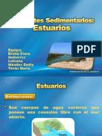141051359-Estuarios.pptx