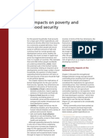 biofuel impact on poverty & food security