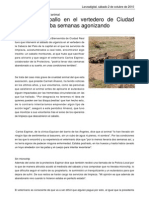 Hallan Un Caballo en El Vertedero de Ciudad Real Que Llevaba Semanas Agonizando PDF 16213