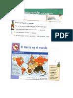 Guia Infografia