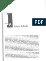 TEXTO 7 EVOLUÇÃO DA ESCRITA  R$ 4,50