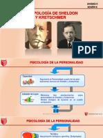 6 Biotipologías de Sheldon y Kresthmer