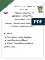 Glándula Suprarrenal Resumen