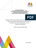 Disposiciones-Autonomía Curricular Final