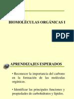 02 Biomoleculas I