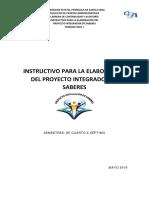 INSTRUCTIVO DEL PIS GRAL.pdf