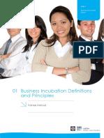 Business Incubator Training