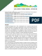 Sistemas-de-espaços-livres-e-forma-urbana-estudo-em-Uberaba-MG-2