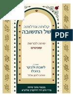 Rav Dovid Dudkevitch on Parshat Shoftim 5778