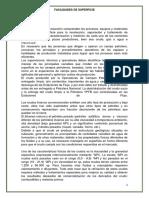 Monografia Alvaro as- Copia