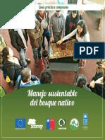 undp_cl_medioambiente_Manejo-bosque-nativo.pdf