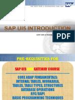 SAPUI5_demo.pdf