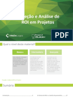 ROI - nivel básico.pdf