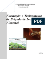 brigadadeincendioFlorestal.pdf
