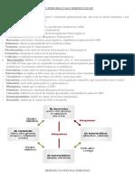 Bactericidas y Bacteriostáticos