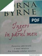 Lorna Byrne-Ingeri în parul meu.pdf