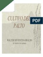 Agronomia Del Palto