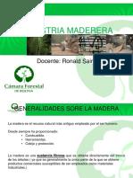 La Industria Maderera en Bolivia