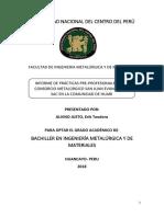 Informe de Practicas ERIK.docx