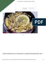 Schüssler Alkalmazás Képekkel - ARCANUM GYÓGYSZERTÁR ÉS WEBPATIKA - Webáruház, Webshop