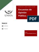 Políticas Públicas-CEPAL - Copia