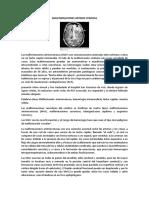 Aneurisma, Isquemia, Malformación Av