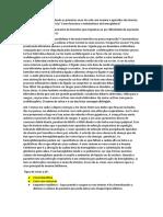 Integração Caso 11.Docx