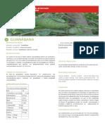 DATOS DE LA GUANÁBANA Y LOS NÉCTARES.docx