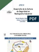 CULTURA DE SEGURIDAD.pdf
