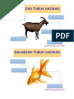 GAMBAR CIRI HAIWAN YEAR 3.docx
