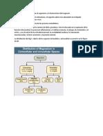 Distribución Del Magnesio en El Organismo y La Homeostasis Del Magnesio El Magnesio