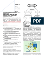 IMPACTO AMBIENTAL N°2 MAQUINARIA NEIRA UCHOFEN (1)