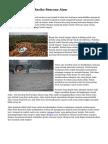 Trik Mengurangi Resiko Bencana Alam