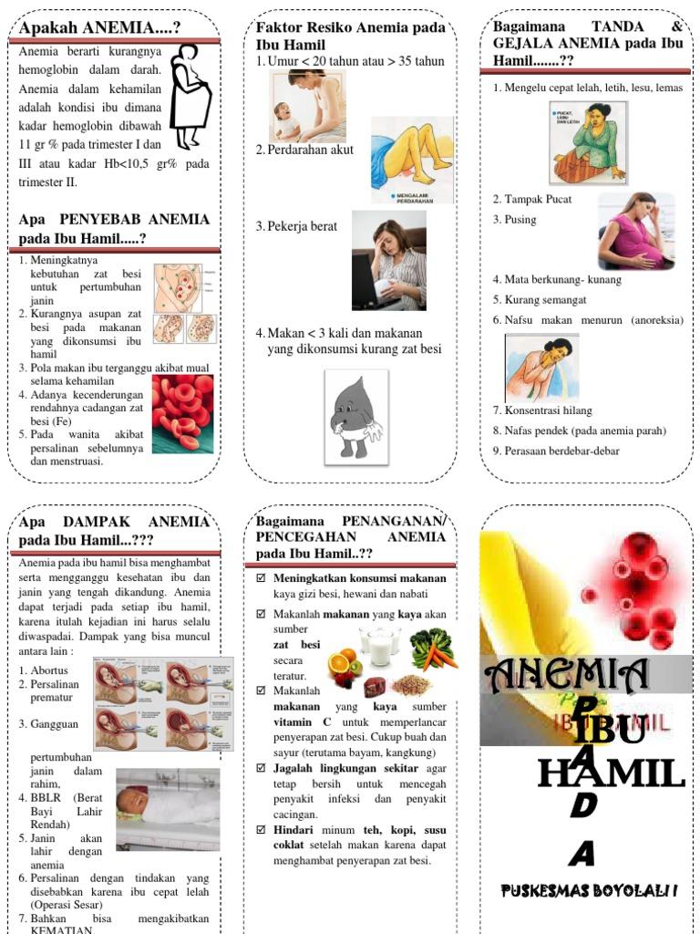 makanan untuk ibu hamil anemia