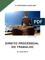 Livro   PROCESSO DO TRABALHO   ALUNO.pdf