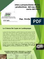 j06.Asociacion Peruana.ing.Anali Solis