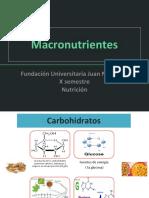 MACRONUTRIENTES SS.pptx