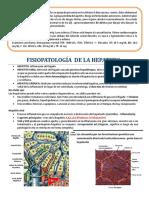 Fisiopatología de La Hepatitis