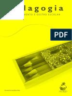 gestão escolar Carmenisia Aires.pdf