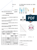 diagnstico-110708181941-phpapp01.docx