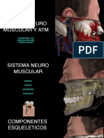 Atm Neuromuscular