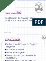 Glucolisis JANO