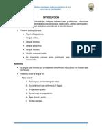 Patologia Lingual y Encias