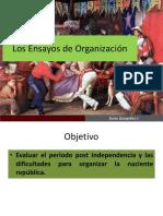 Los Ensayos de Organización