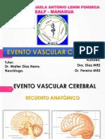 Acv Dr Pereira-1